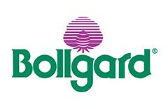 bollgard