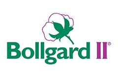 bollgard ii